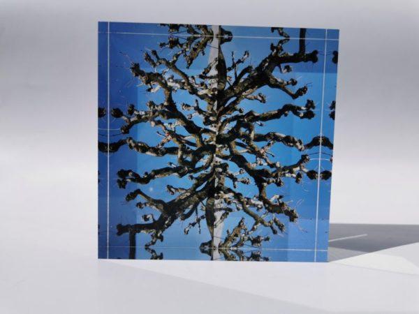 Foto acrylblock danibrandt